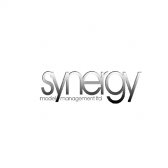 Synergy models